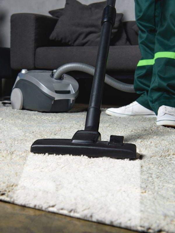 close-up view of professional worker using vacuum cleaner and cleaning white carpet